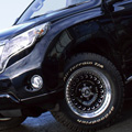 D-Force AKRO + TOYOTA PRADO 150